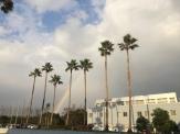 ソラージュの虹