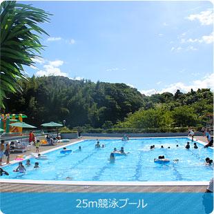 25m競泳プール